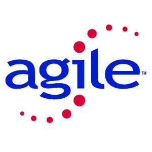 michigan agile